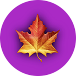 App Icon (circle with leaf emoji)